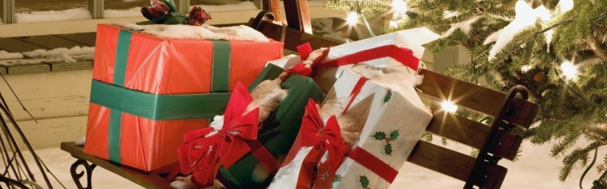 HACKABLE GIFTS AND TOYS: PROTECTING YOUR PERSONAL INFORMATION