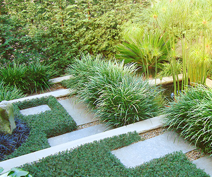 Landscaping and Lawn renovations Greater Sydney Area