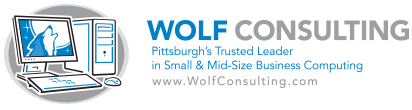 Wolf Consulting, Inc